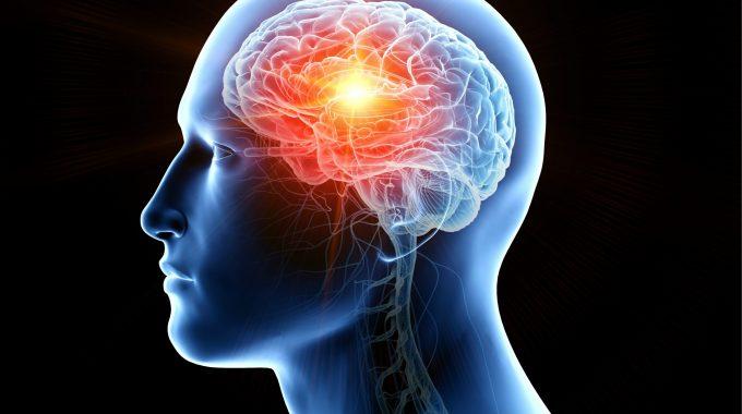 Teste Sanguíneo Permite Detecção De Tumores Cerebrais, Aponta Estudo