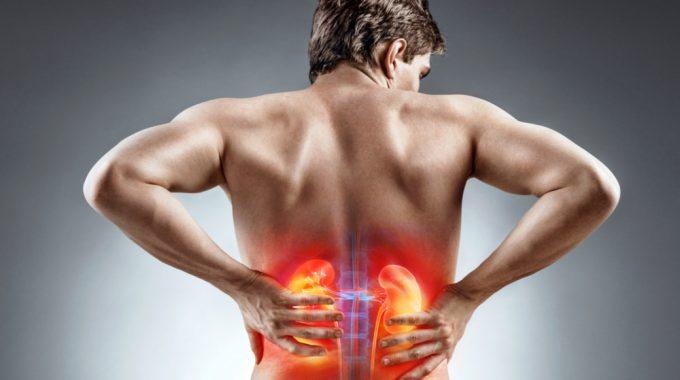 Estudo Traz Resultados Promissores No Tratamento De Câncer Raro, O Urotelial
