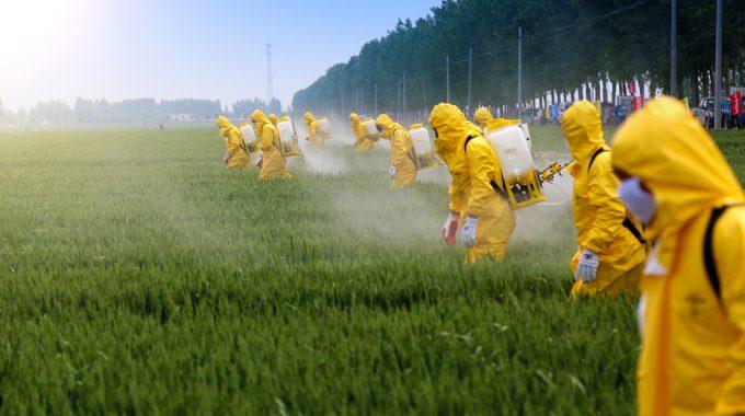 Exposição A Pesticidas Aumenta Risco De Leucemia Mieloide Aguda, Diz Estudo
